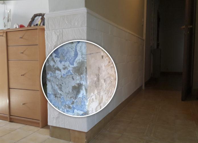 La humedad de cimientos por capilaridad tiene solucion